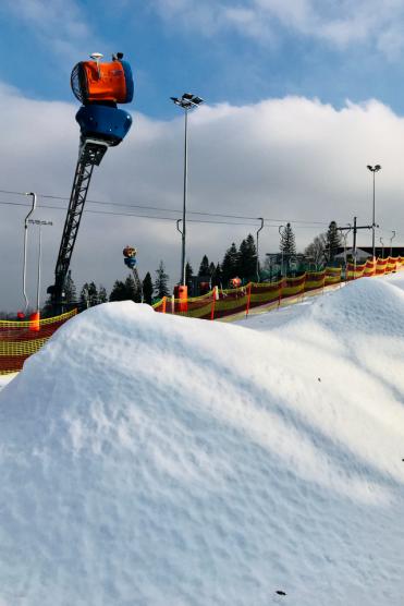 BSA_snieg