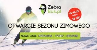 zebra_bus.jpg