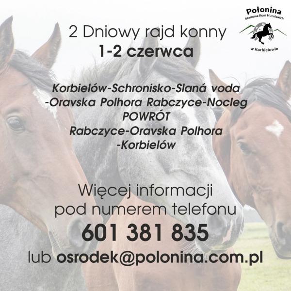 rajd_polonina.jpg